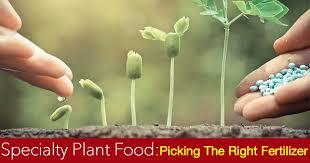 Garden Fertilizer Types - slow release fertilizer how to use them in the garden