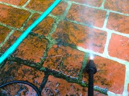 How To Remove Mold From Patio Cushions by How To Ged Rid Of Mold Mildew Or Moss