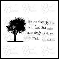 meaning of trees the true meaning of life is to plant trees under whose shade you