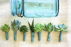 boutonnieres for wedding succulent boutonnieres calie