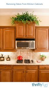 how to make cabinets smell better cleaning odors from kitchen cabinets thriftyfun