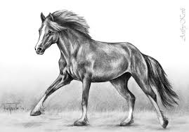 gallery pencil sketch of running horse drawing art gallery