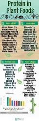 the ultimate list of top inflammatory and anti inflammatory foods