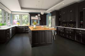Kitchen Cabinets With Hinges Exposed Newport Espresso Ready To Assemble Kitchen Cabinets Kitchen