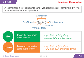 learnhive icse grade 6 mathematics introduction to algebra