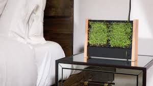 Vertical Garden Frames - the ecoqube frame is a vertical garden built for your apartment