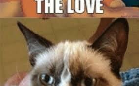 Feel The Love Meme - you feel it meme hot trending now
