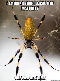 Spider Meme - spider meme 1