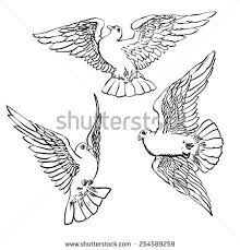 three flying hand drawn doves sketch stock vector 254589259