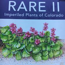 plants native to colorado cnhp blog rare ii imperiled plants of colorado exhibit at the