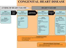 chronic heart failure in congenital heart disease circulation