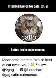 Internet Meme Names - 25 best memes about internet names animals internet names