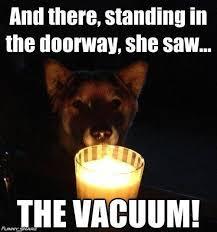 Halloween Meme Funny - halloween memes 2015 funny photos jokes best images