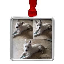 westie on premium square ornaments zazzle co uk