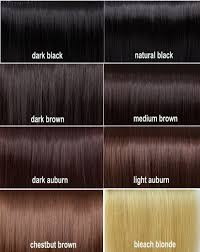 Different Shades Of Red Shades Of Brown Hair Pinterest Colour Chart Brown Hair And
