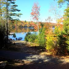 Cottages For Rent On Lake Simcoe by Cottage 303 For Rent On Echo Lake Near Baysville In District Of