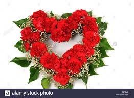 Red Carnations Flower Arrangement Of Red Carnations In Form Of A Heart Stock