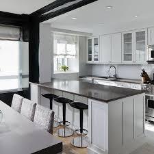 Quartz Kitchen Countertops Kitchen Trendy Black Quartz Kitchen Countertops 621887b4178e