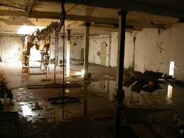 mitigating a flooded basement millwood homes