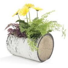 Flower Shops Inverness - kinsch village florist u0026 garden center online flower shop in