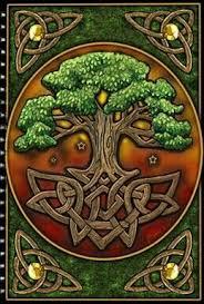 best 25 celtic tree of ideas on celtic tree