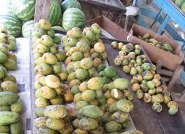 Mango Boom mango
