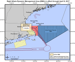Map Of Cape Cod Massachusetts by Noaa Fisheries Announces New Voluntary Speed Restriction Zone E Ne