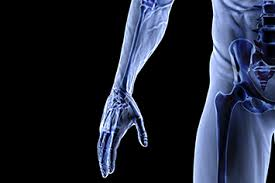 Human Anatomy And Physiology Courses Online Anatomy U0026 Physiology Qqi Level 5 Distance Learning Courses