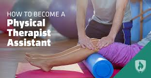 t hone de bureau how to become a physical therapist assistant and why you shouldn t
