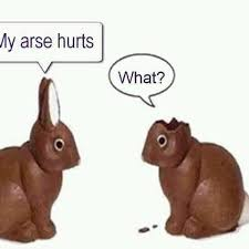 Chocolate Bunny Meme - easterlol instagram tag pikbrowse com