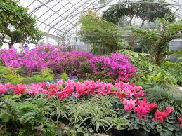 Inside Garden by Inside Gardens Canoe Communications