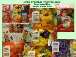 les fleurs comestibles en cuisine cuisine en folie fleurs et herbes de chez la famille auda