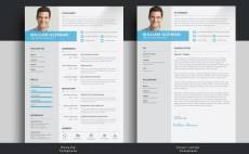 professional resume and cover letter writing services resume cover letter freelance writing services fiverr