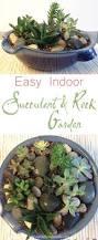 easy indoor succulent rock garden a houseful of handmade