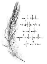 image result for different feather meanings