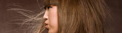 salon iaomo llc hair care and spa pittsburgh pa