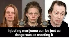 Injecting Marijuanas Meme - injecting marijuana can be just as dangerous as snorting it