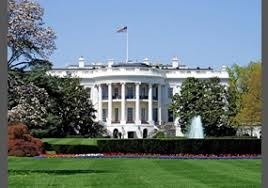 should the government paint the white house a different colour