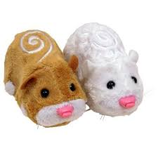 zhu zhu pets hamsters trends case study seo hosting blog
