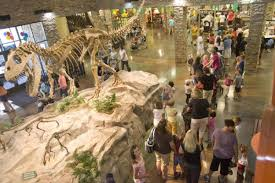 coupon for dinosaur museum thanksgiving point fingerhut free