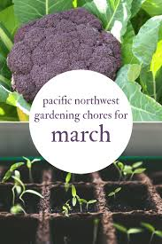 march gardening chores for the pacific northwest northwest