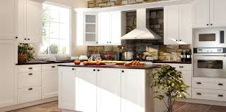kitchen cabinets tampa wholesale rta kitchen cabinets online canada by choice cabinet florida