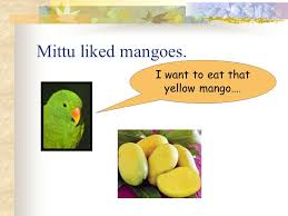 mittu and the yellow mango class i ppt video online download