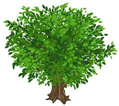green tree cliparts free clip free clip on