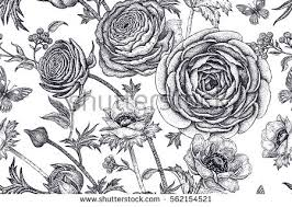 Flowers Designs For Drawing Black And White Pattern Stock Images Royalty Free Images