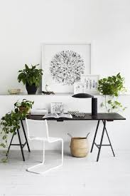 minimalist home office with indoor plants good indoor plants for