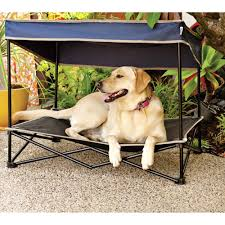 beds dog canopy bed pottery barn outdoor beds for large dogs