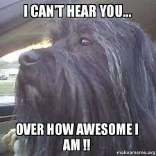 Can Am Meme - can am meme 28 images five awesome atv utv memes atv com can am