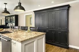 Black Kitchen Cabinets Design Ideas Black Kitchen Cabinets Design Ideas Cabinet Best Matte Beautiful