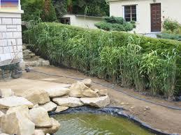 abri jardin bambou création escalier et haie de bambous à meulan jardin paysagiste 27